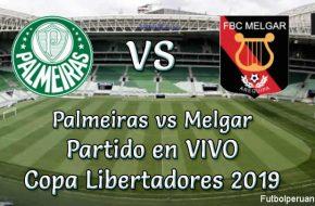 Palmeiras vs Melgar en VIVO y Directo Copa Libertadores 2019